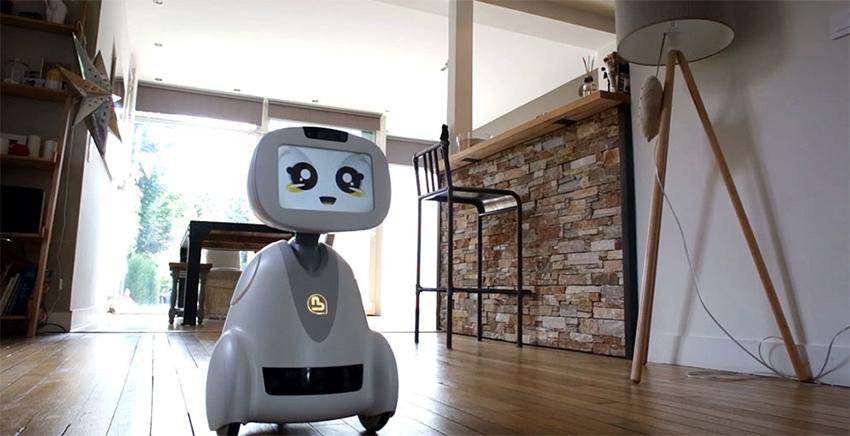 Социальный робот-помощник Buddy
