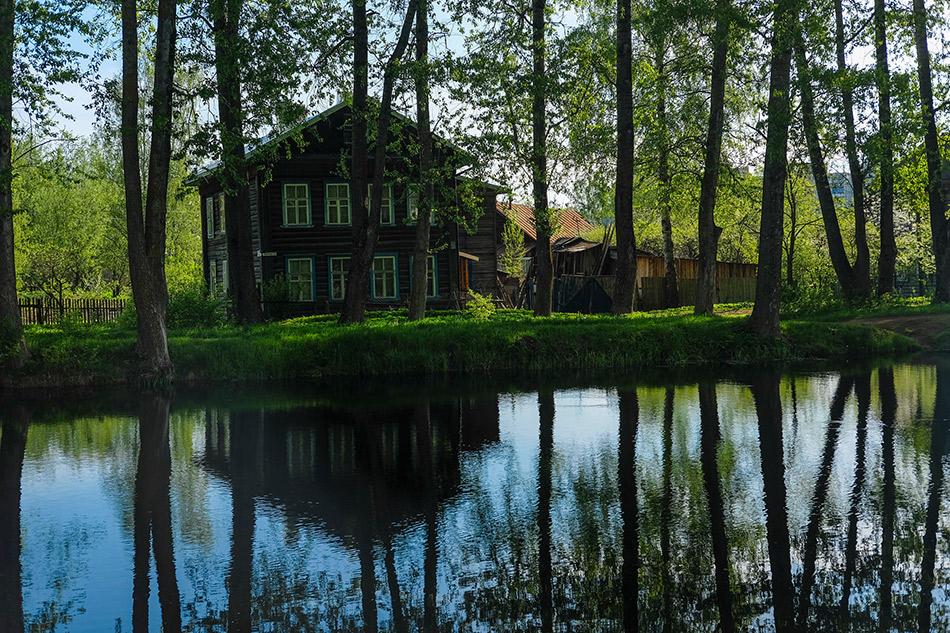 Фото:Vereshchagin Dmitry/shutterstock