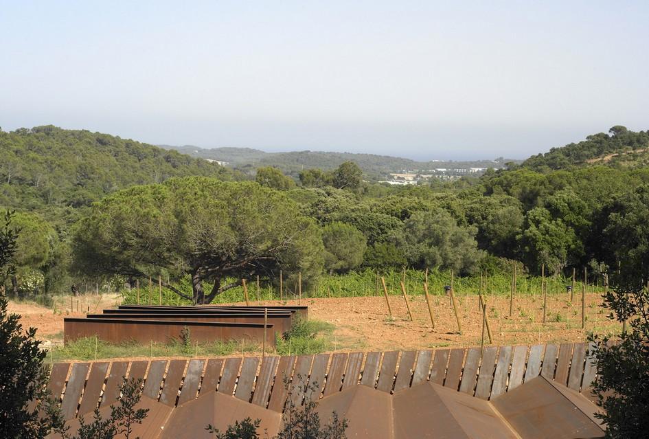 С одной стороны винодельню окружаетлес, сдругой—виноградники Мас-дель-Вент, Мас-Сальва иБен-Льок
