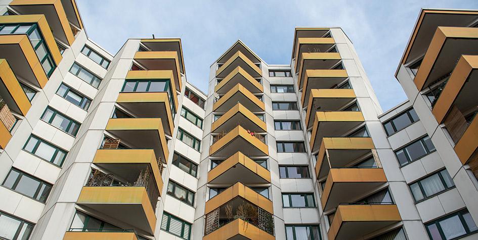 Фото: Lucas Bäuml/dpa/Global Look