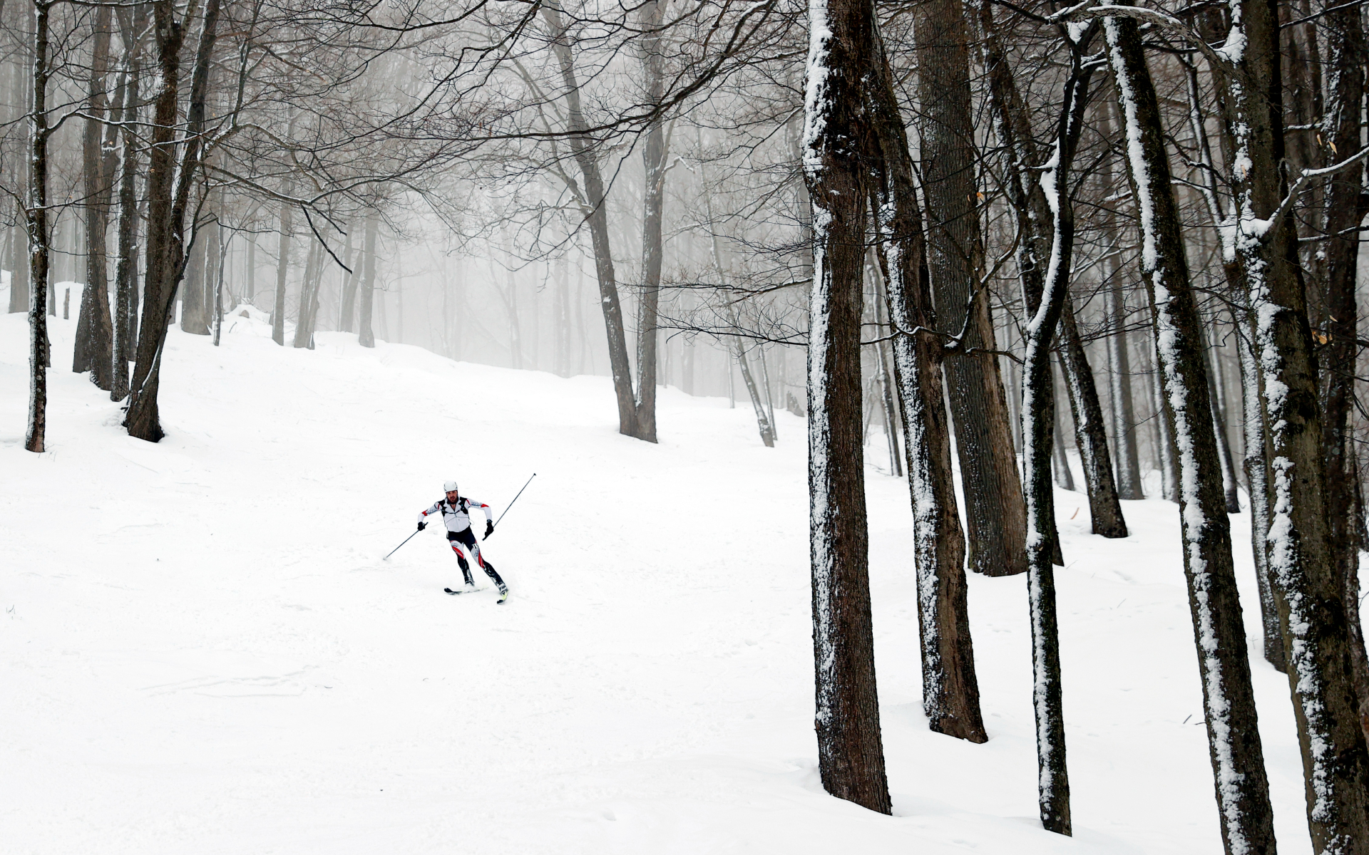 Фото: Maddie Meyer/Getty Images