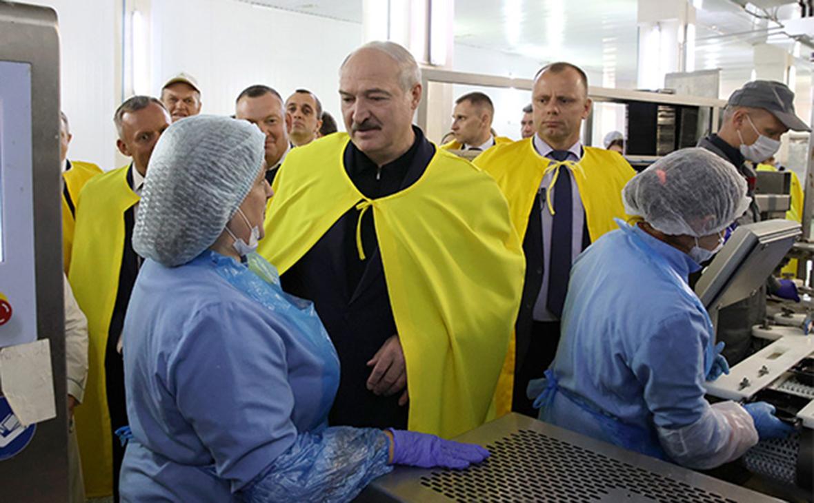 Александр Лукашенко во время посещения агрокомбината «Дзержинский»