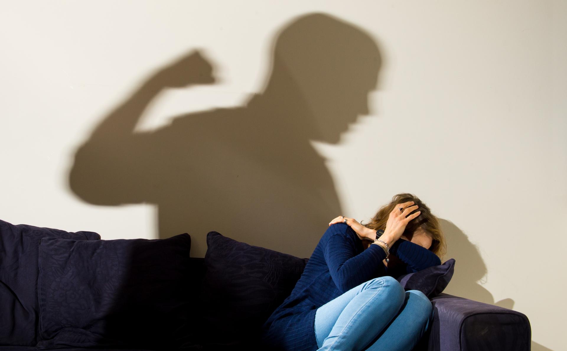 """В законопроекте о домашнем насилии появилось понятие """"преследование"""""""