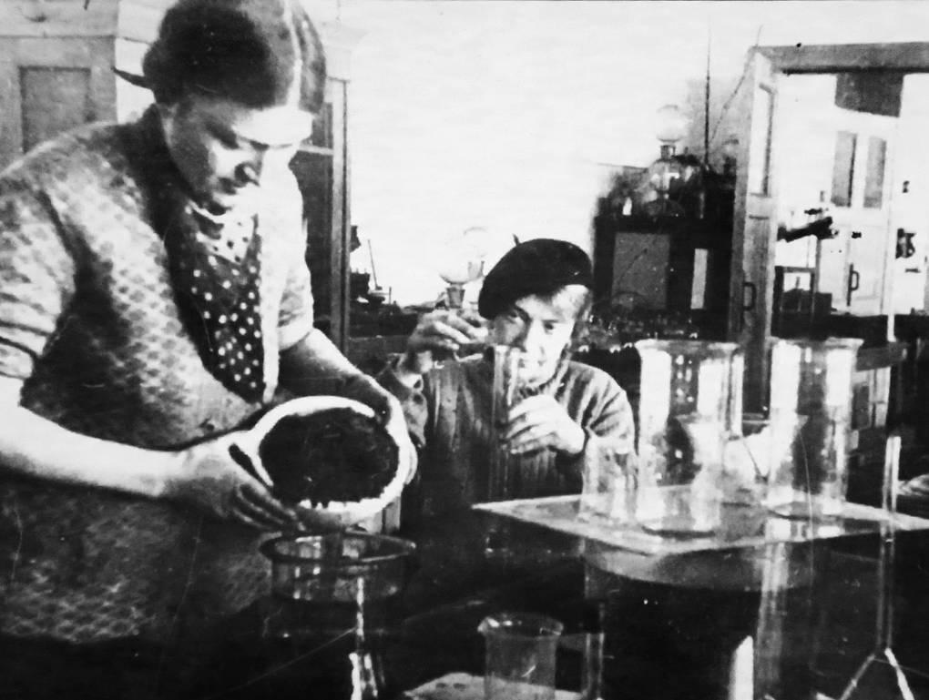 Для предупреждения авитаминоза каждый ленинградец ежедневно должен был принимать до 200 мл хвойного настоя