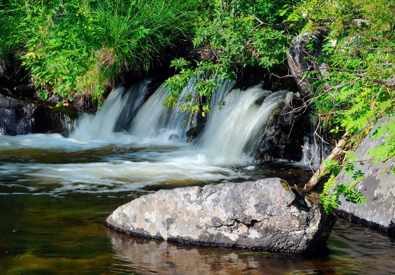<p>Карелия. Национальный парк &laquo;Паанаярви&raquo;</p>