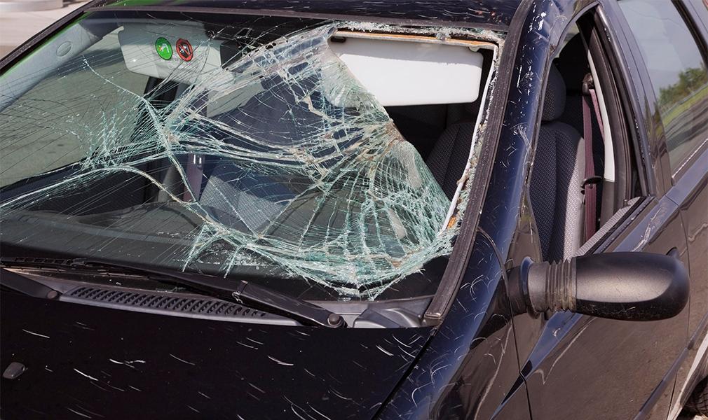 Шторы на окна авто