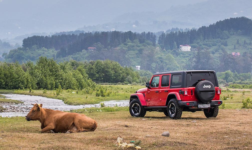 Боржоми, коровы и перевалы. Тест-драйв Jeep Wrangler в Грузии