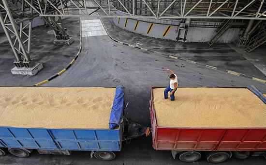 Автомобили, груженые зерном, в очереди на взвешивание и разгрузку на зерновом терминале Новороссийского морского торгового порта