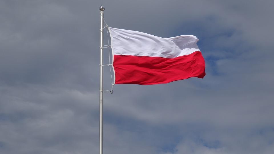 Фото: Przemysław Krzak