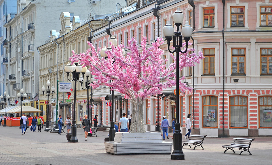Фото:Arsenie Krasnevsky/shutterstock