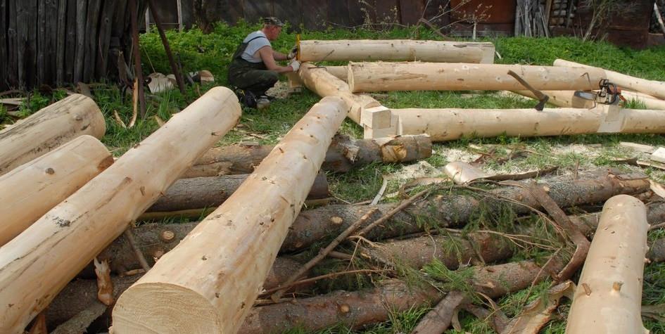 Совет Федерации разработал меры по развитию деревянного домостроения