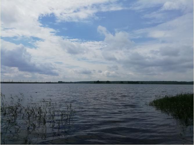 Фото:РБК Вологодская область
