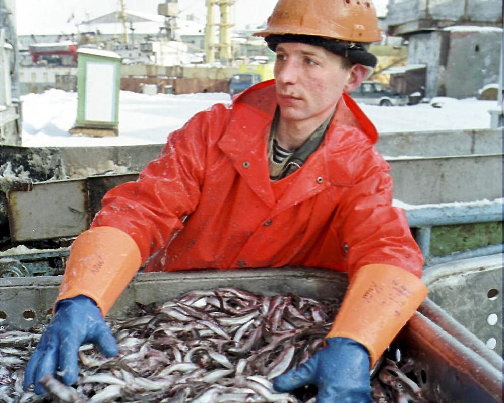 Мурманский рыбный порт