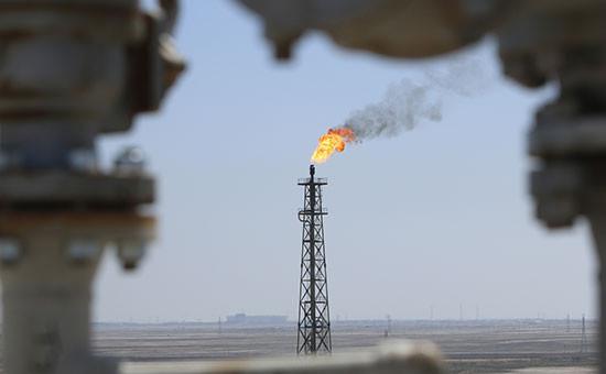 Фото: Essam Al Sudani / Reuters