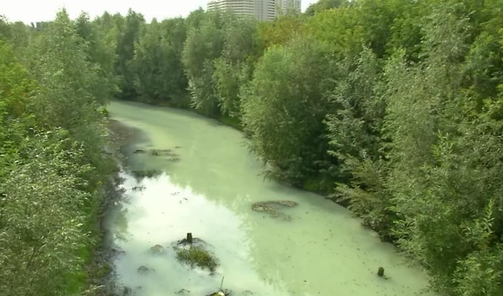 Река Тула