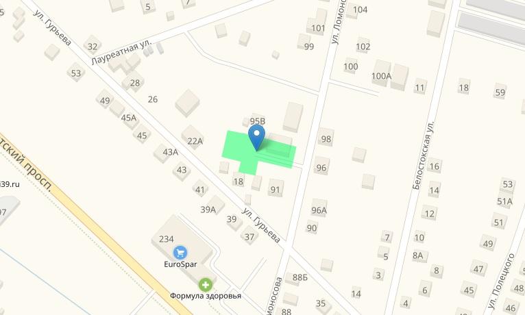 Фото: Участок строительства на ул. Ломоносова. Скриншот кадастровой карты