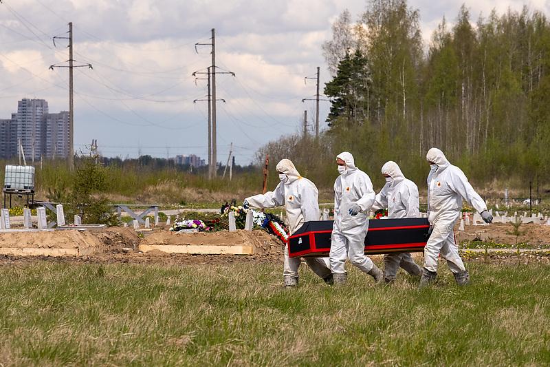 Работники кладбища во время похорон пациента, умершего от коронавирусной инфекции, на Новом Колпинском городском кладбище