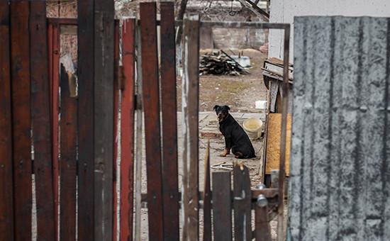Разрушенный поселок Трудовские Петровского района Донецкой области. Архивное фото