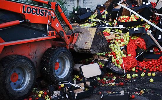 Уничтожение санкционных продуктов. Архивное фото