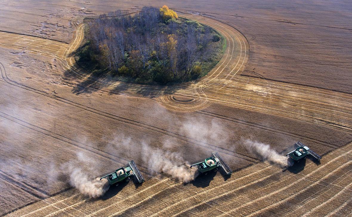 Московская биржа запустит торги фьючерсами на зерно