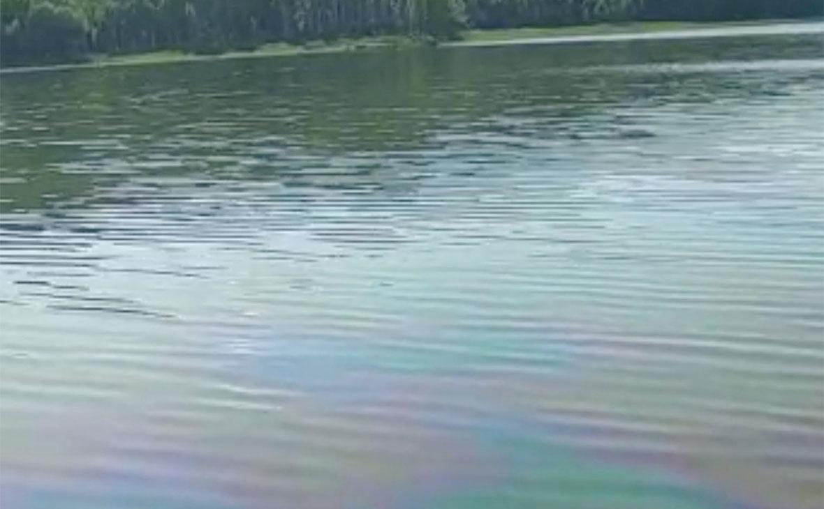 Фото: Амурская бассейновая прирдоохранная прокуратура