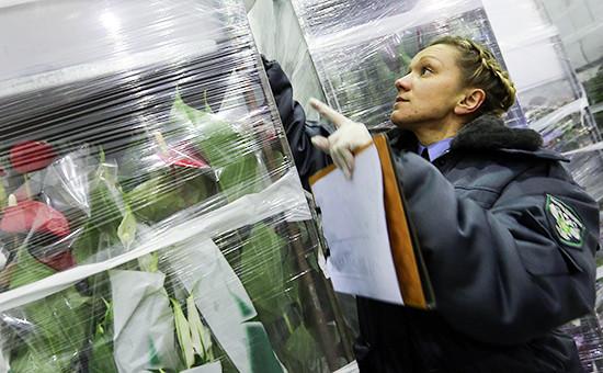 Проверка цветочной продукции