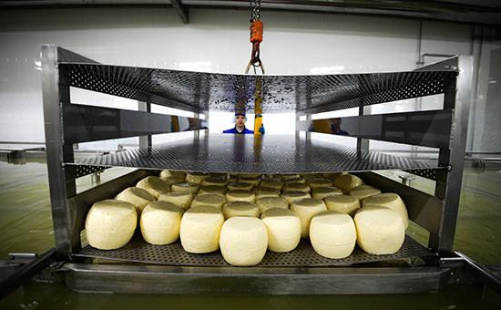Завод по производству сыров. Архивное фото