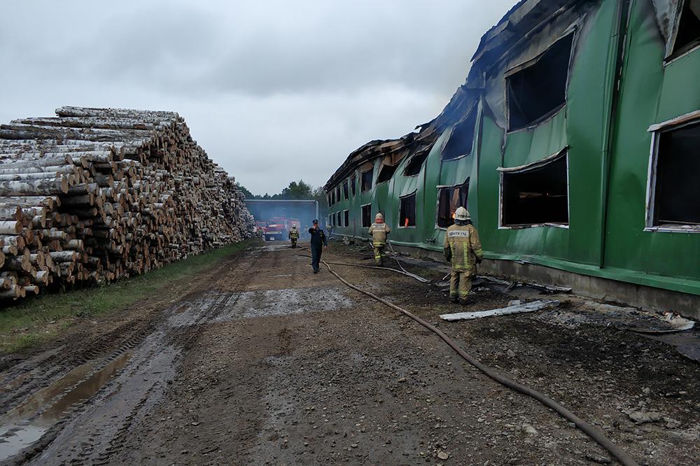 Фото:правительство Вологодской области