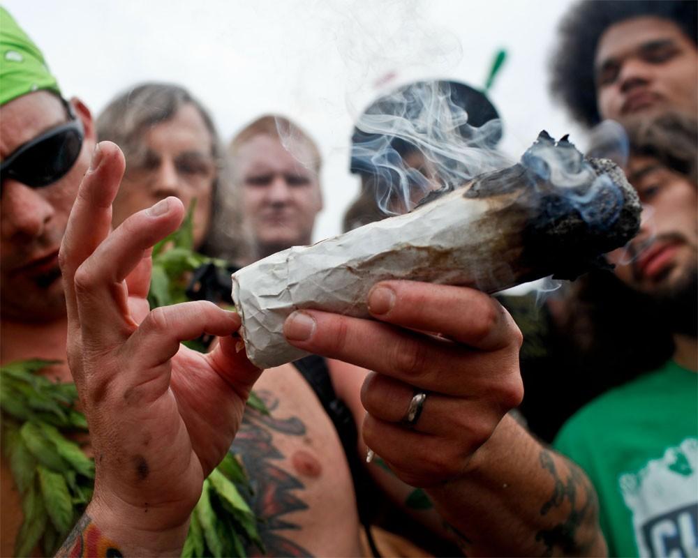 Много ли людей курит марихуану стадии привыкания к марихуане