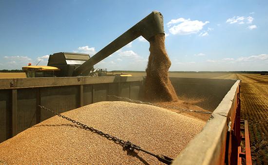 Уборка зерновых культур вКраснодарском крае