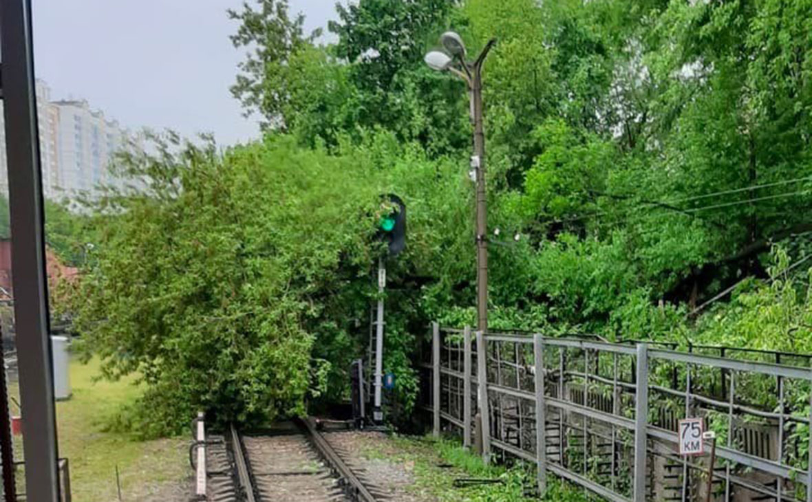 Фото: transportmos / VK