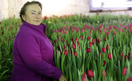 Нина Арифуллина в собственной теплице перед сбором урожая цветов