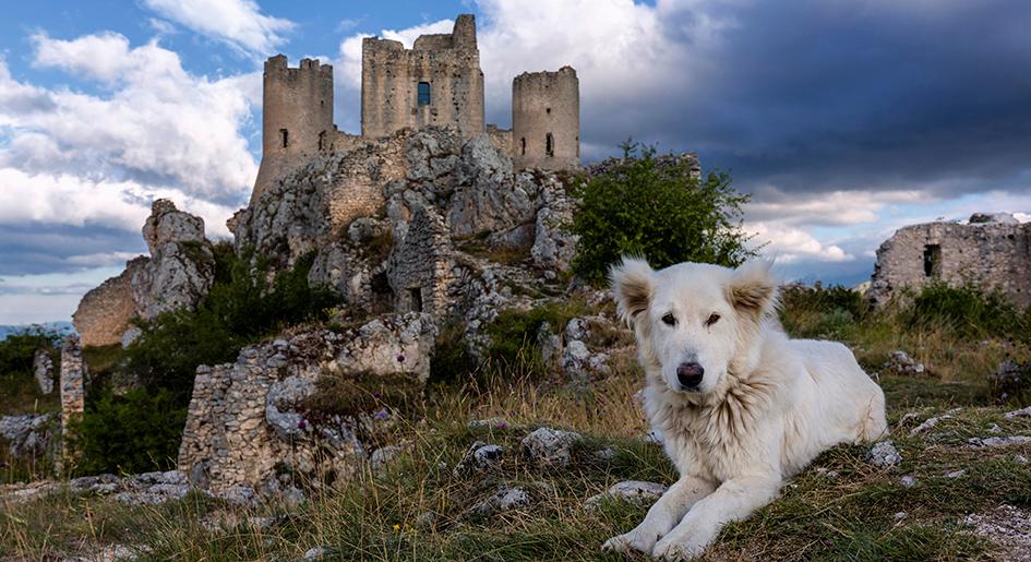 Вид на крепость Rocca Calascio