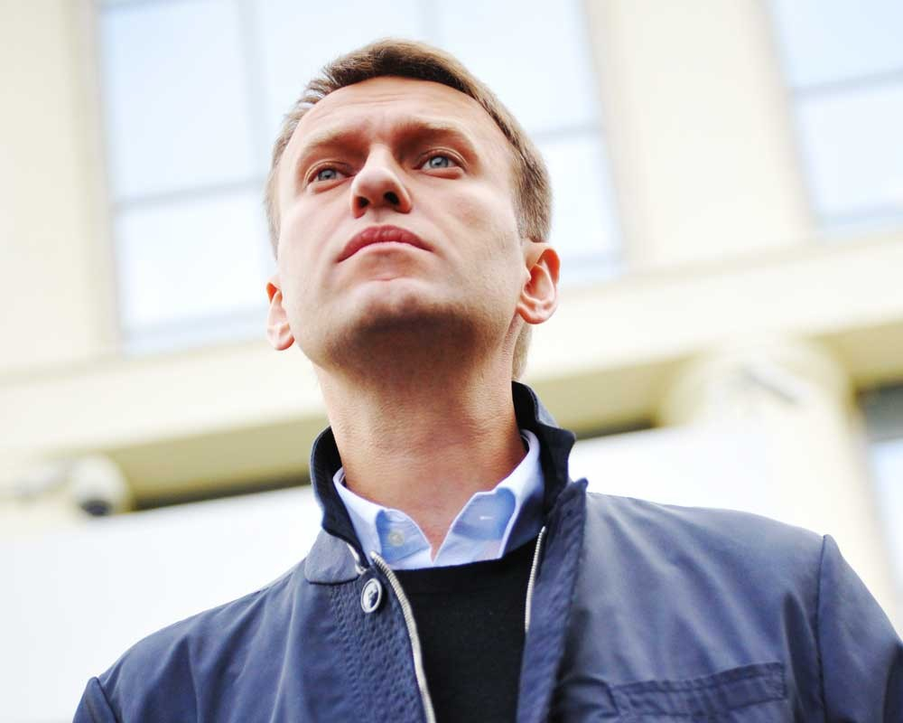нашей базе недвижимость навального фото что это комнатное