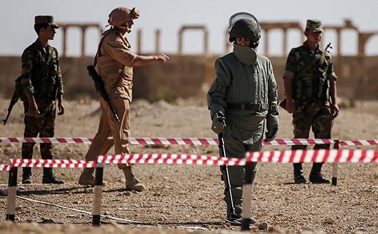 Обучение сирийских солдат российскими военнослужащими поисковой тактике иобнаружению взрывных устройств вПальмире, 6 мая 2016 года