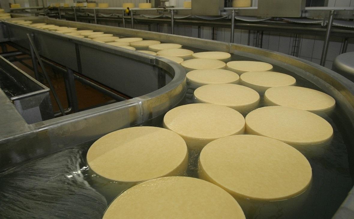 Производство сыра на Белебеевском молочном комбинате
