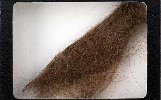 Прядь волос легендарного музыканта Джона Леннона