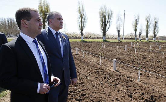 Премьер-министр РФ Дмитрий Медведев иглава Крыма Сергей Аксенов (слева направо) вовремя посещения аграрного предприятия в Крыму,27 апреля 2015 года