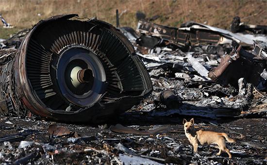 Обломки пассажирского самолета «Малайзийских авиалиний» Boeing777, разбившегося 17 июля врайоне села Грабово