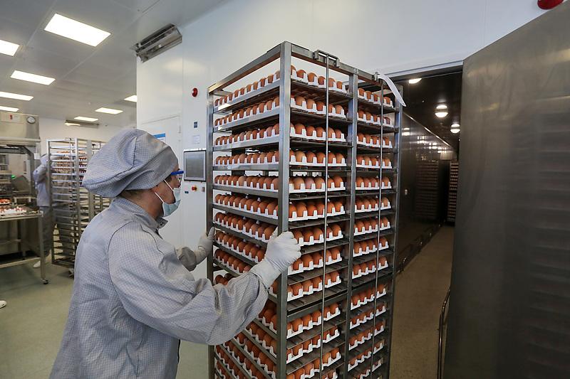 Камера для производства вакцины