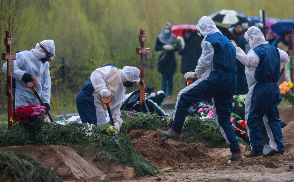 Фото: Коньков Сергей / ТАСС