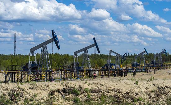 Нефтяные станки-качалки вблизи города Сургут