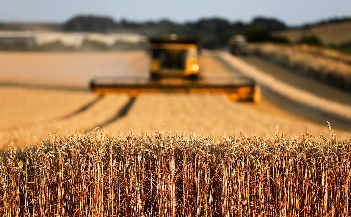 Chủ sở hữu đất nông nghiệp nào lớn nhất ở Nga?