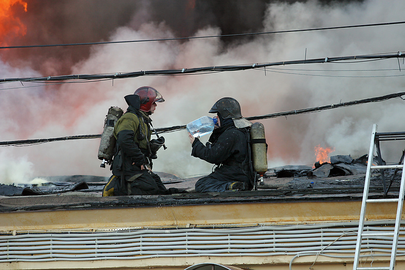 Фото:Петр Ковалев/Интепресс