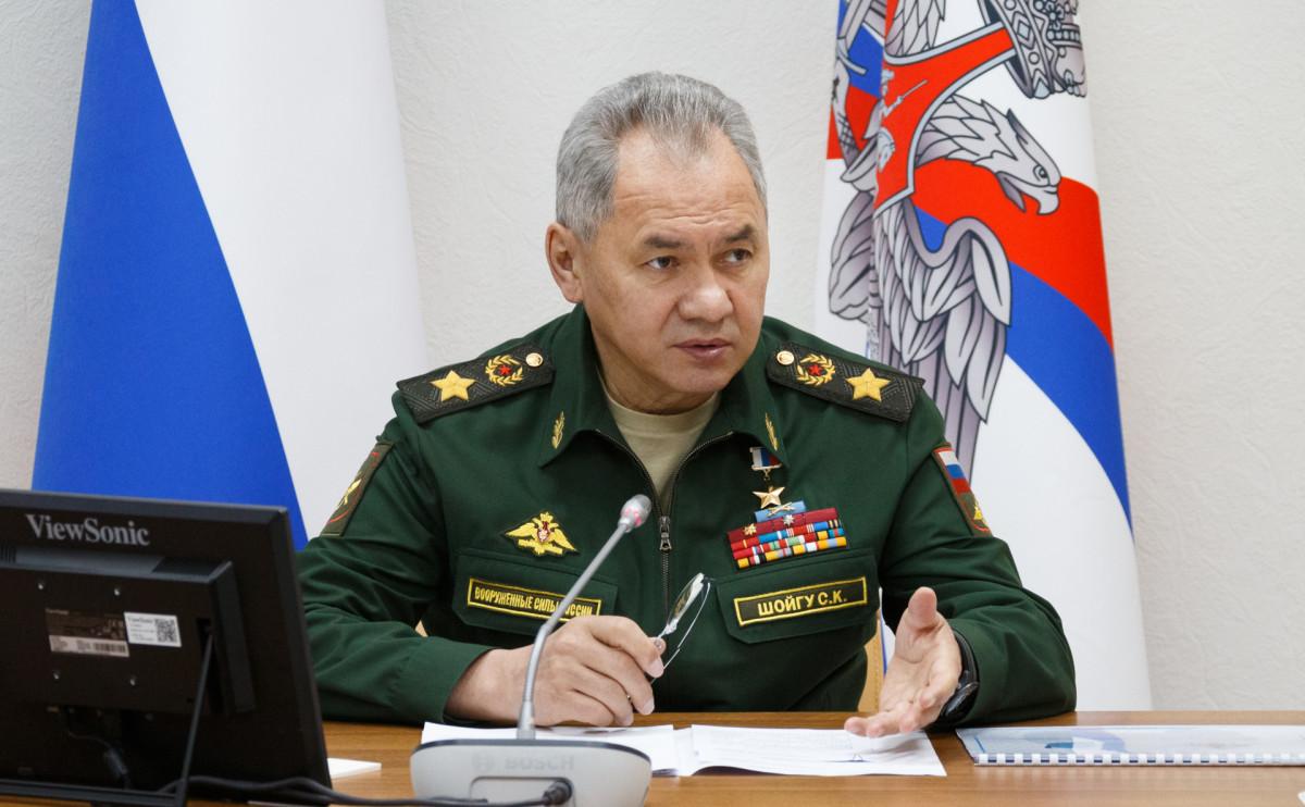 Шойгу заявил о создании новой дивизии на юге России