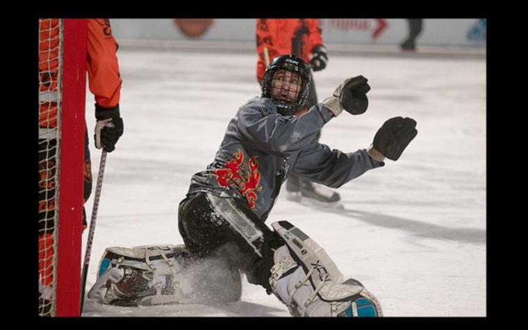 Фото: Роман Гейзель (Фото: cайт Федерации хоккея с мячом России)