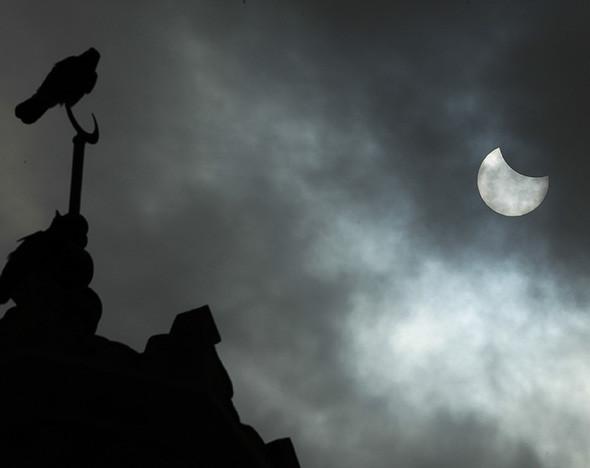 Фото:  getty Images/fotobank.ru; AP