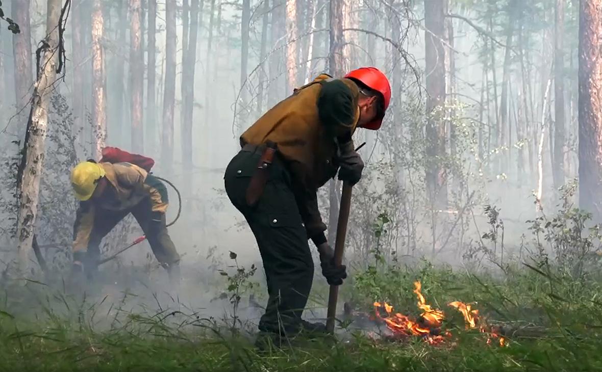 Фото: ФБУ «Авиалесоохрана» / ТАСС