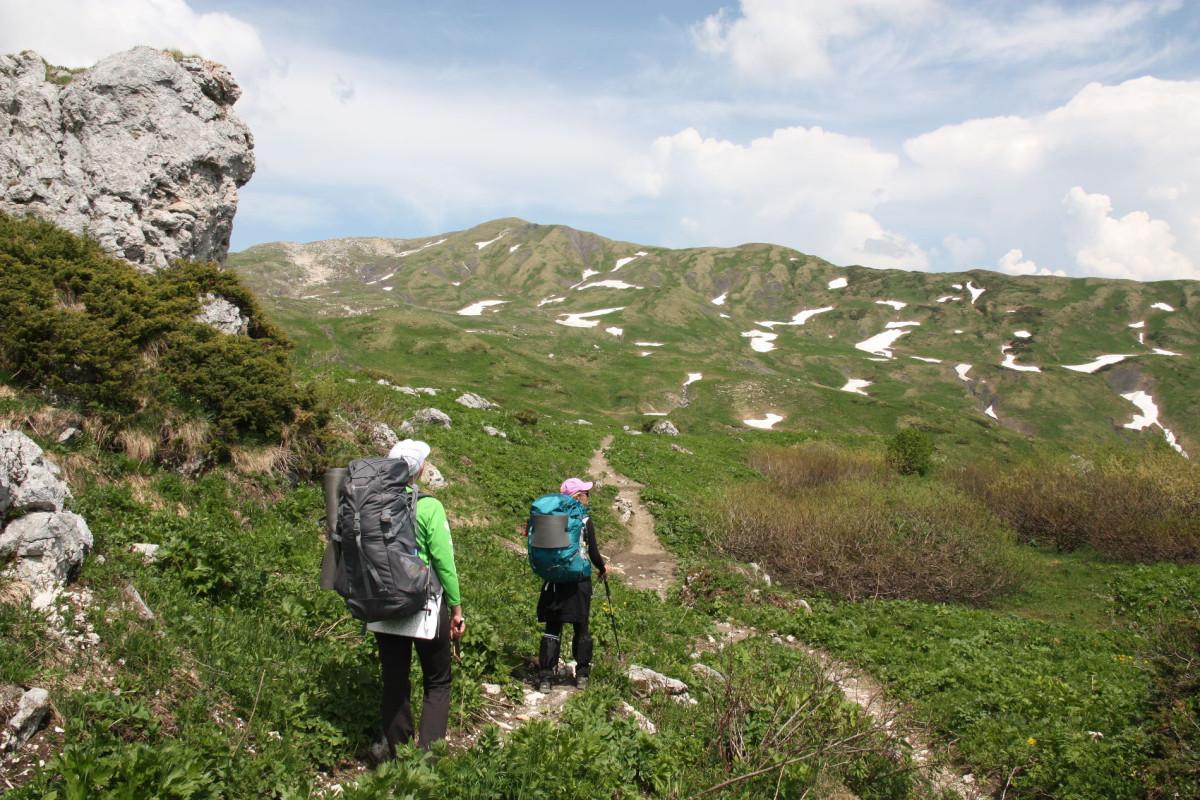 Фото:  Пресс-служба Кавказского заповедника