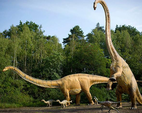 Фото: пресс-маериалы Mark Wilkinson; gettyimages.com